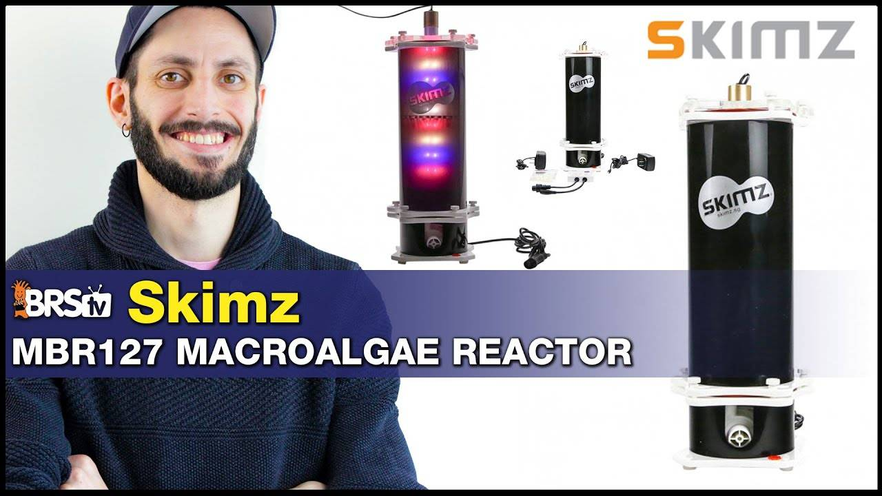 Skimz Macroalgae Reactor MBR127 : No room for a refugium? Try a compact cheato reactor!