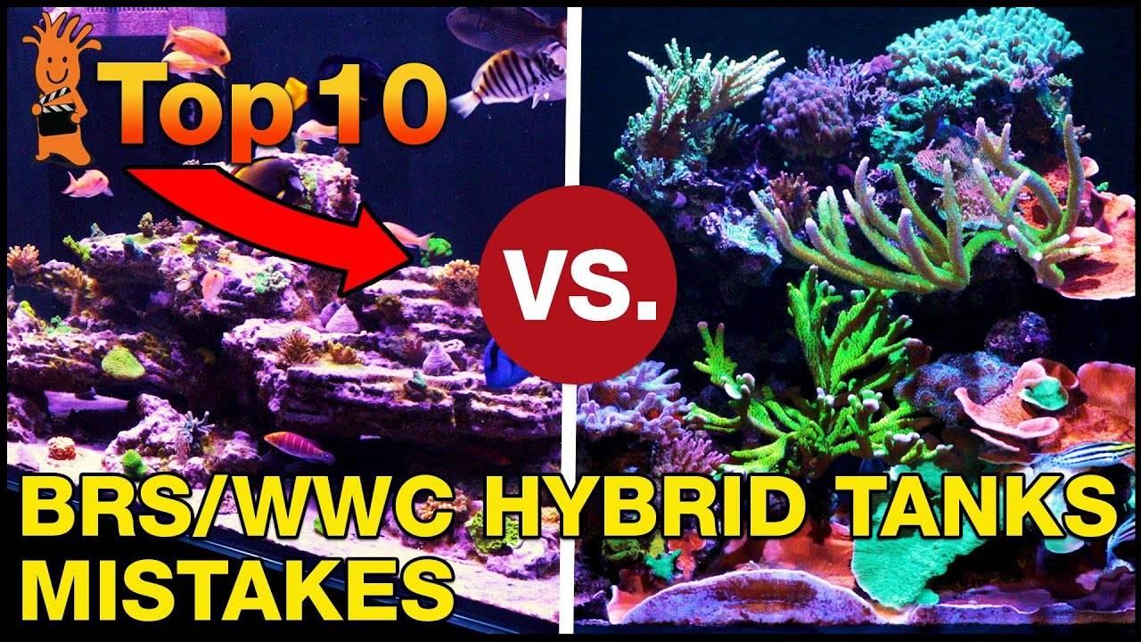 Was the BRS/WWC Hybrid Method a Mistake?