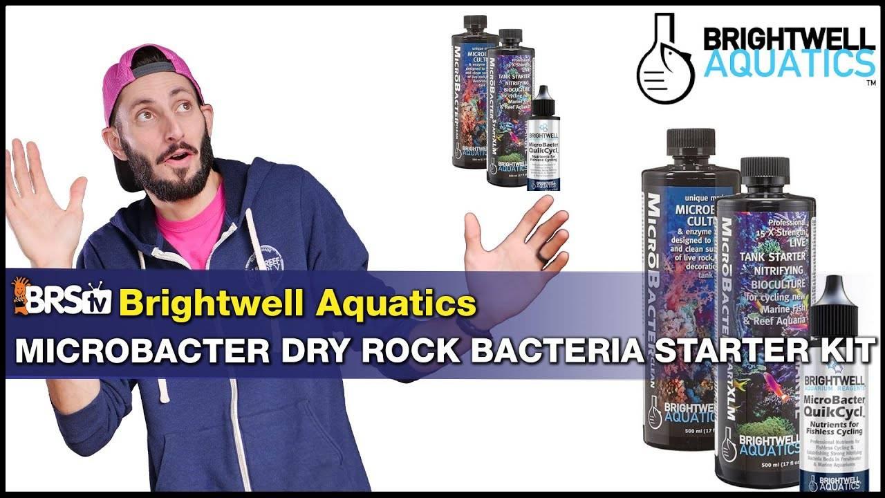 BRStv Product Spotlight - Brightwell Aquatics Microbacter Dry Rock Bacteria Starter Kit