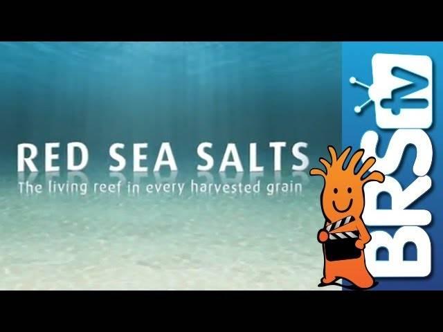 Red Sea Coral Pro Salt