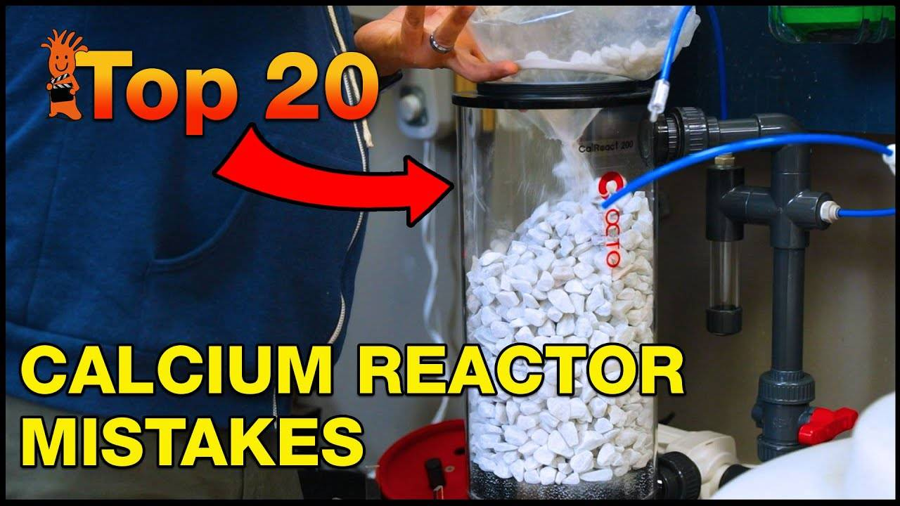 Top 20 Calcium Reactor Mistakes