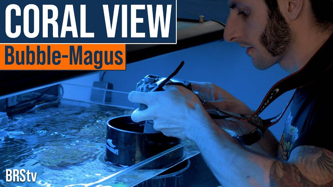 BRStv Product Spotlight Bubble Magus Coral Viewer