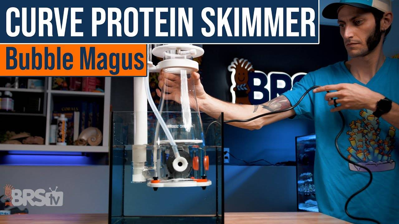 BRStv Product Spotlight - Bubble Magus Curve Protein Skimmers