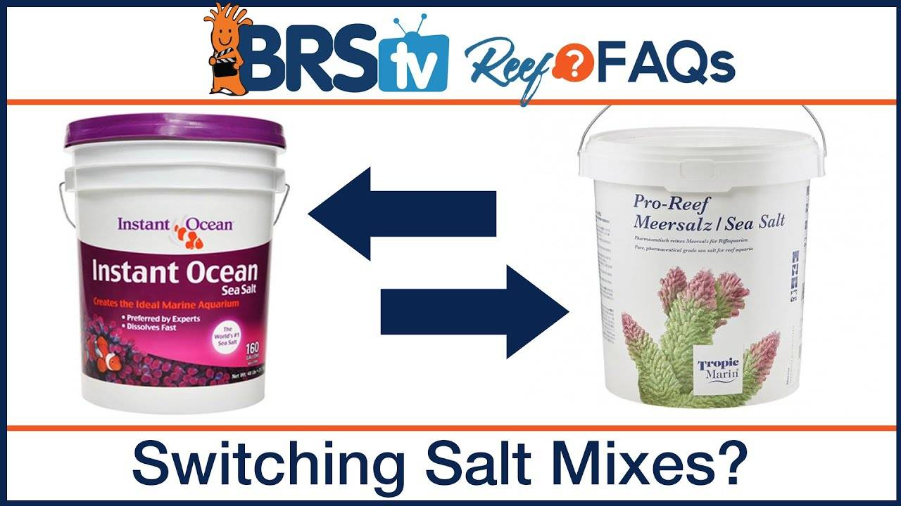 Switching marine salt mix brands safely for a saltwater tank - BRStv Reef FAQs