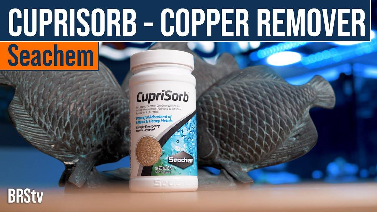 BRStv Product Spotlight - Seachem Cuprisorb Copper Removing Resin Media
