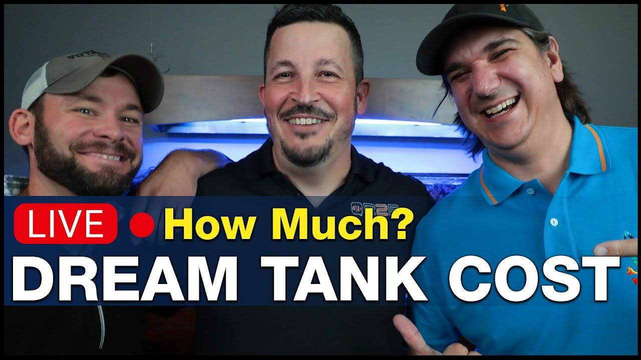 """Ep4.1 - Talking dollars with David Hammontree, """"The Rev"""". The cost of the dream reef tank 