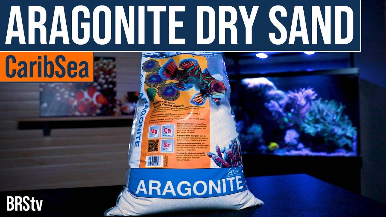 Why Choose Dry Sand for Your Saltwater Aquarium Sand Bed?
