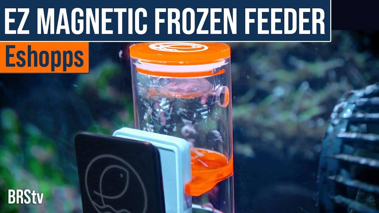 BRS Product Spotlight - Eshopps EZ Feeder Magnetic Frozen Fish Food Feeder