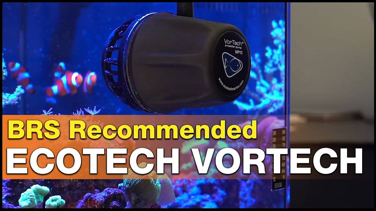 It's BRS Recommended - EcoTech Marine VorTech Powerhead