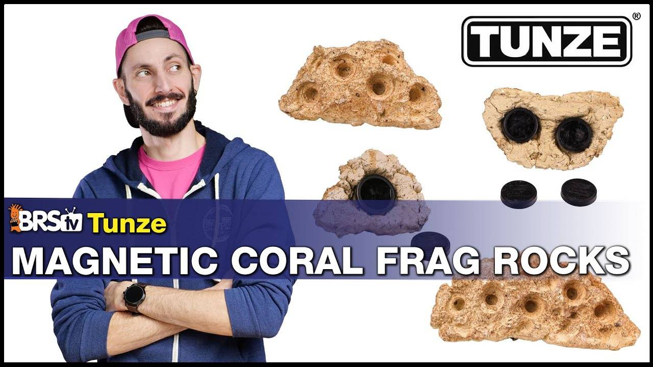 A Frag Rack That Looks Like a Rock, Because It Basically Is a Rock. Tunze Magnetic Coral Frag Rock