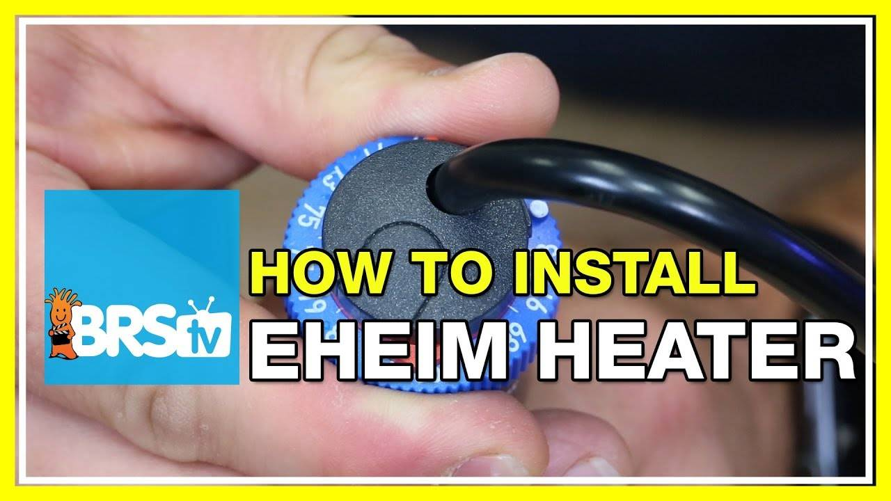 How to install and calibrate Eheim Jager aquarium heaters - BRStv How-To