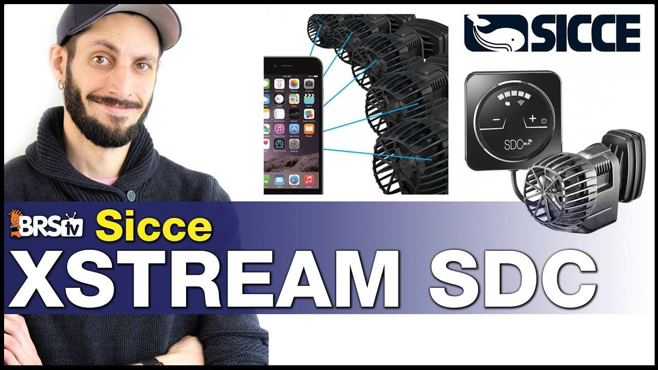 Sicce SDC XStream Powerhead : Sure, it moves water...but also tank temp & power alerts!