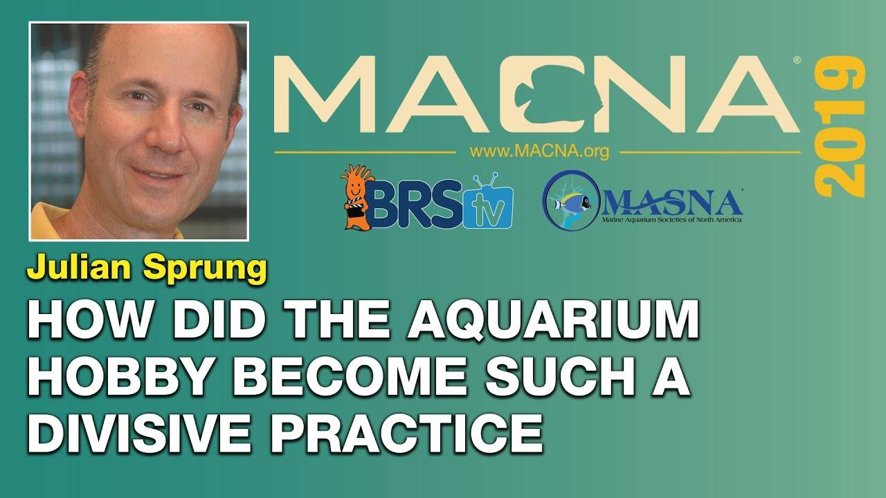 Julian Sprung: Is the aquarium hobby controversial? How do we unite and prosper? | MACNA 2019
