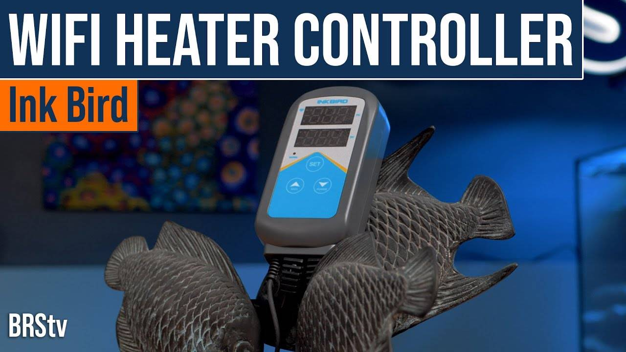 BRStv Product Spotlight Inkbird Wifi Aquarium Heater and Temperature Controller