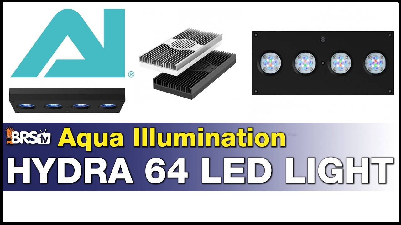 AI Hydra 64HD: Why you should consider this LED for your reef tank!