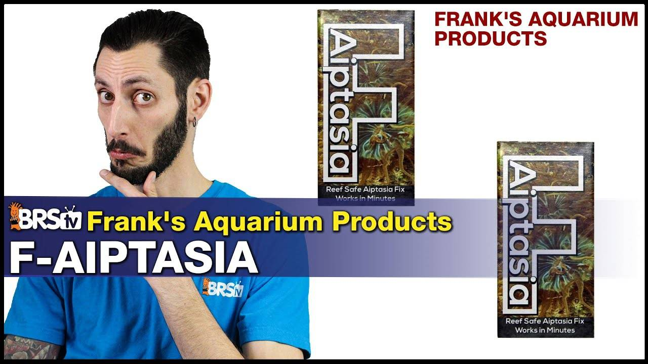 Frank's F -Aiptasia : Reef Tank Aiptasia Removal Made Easy. Trust Us, We've Tried Them All