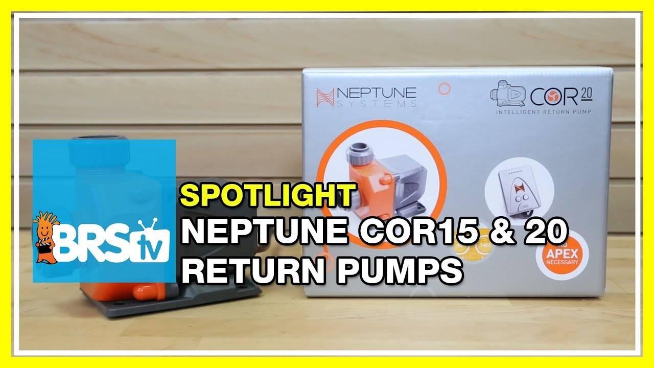 Neptune COR Pump Spotlight - BRStv