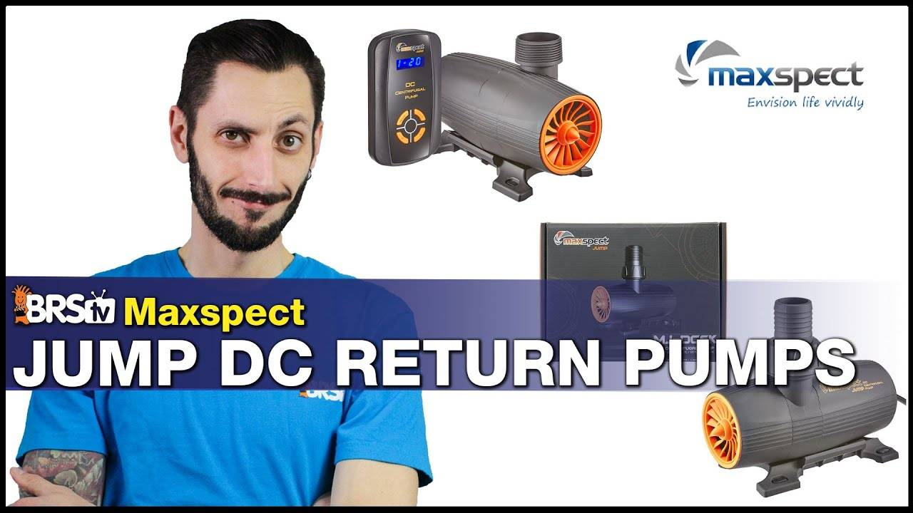 The Maxspect Jump DC Return Pump: Fine tuning control, adjustable feed modes, quiet DC operation