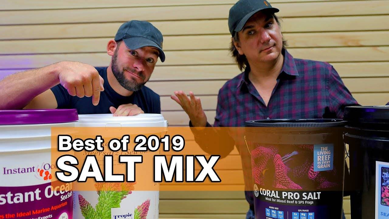 Best Salt Mixes of 2019: The Final Four