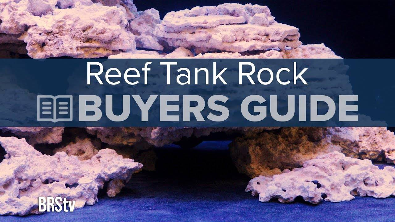 The Ultimate Buyers Guide to Dry Live Rock