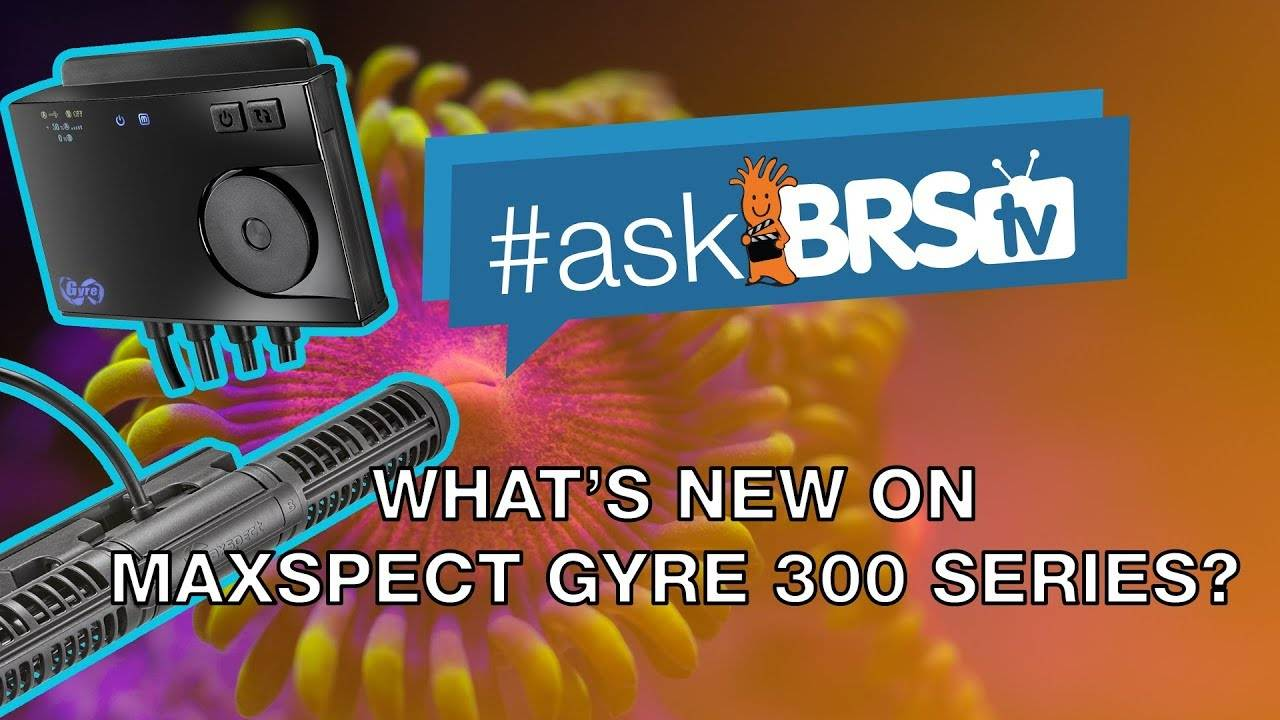 Maxspect Gyre 300 Series: What's new? - #AskBRStv