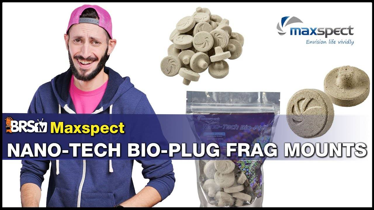 BRStv Product Spotlight - Maxspect Nano-Tech Bio Plug Coral Mounts