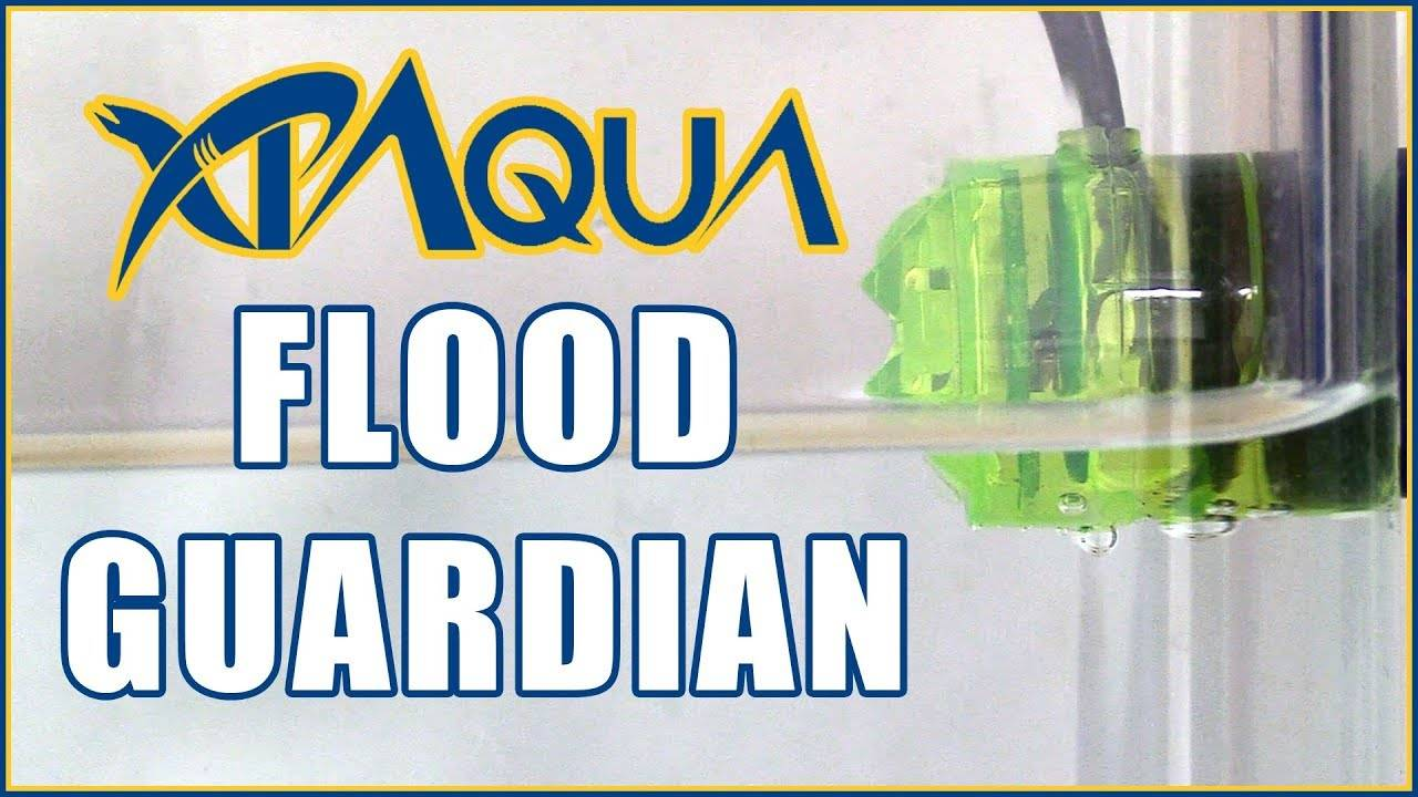 How to Install the RO/DI Flood Guardian - Electronic Auto Shut Off Valve Kit from XP Aqua