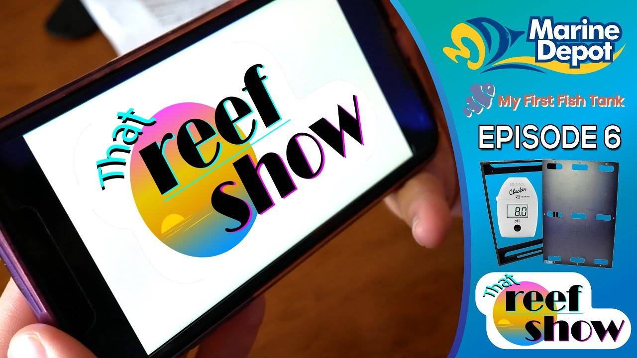 """""""That Reef Show Ep 6: Special Deliveries"""