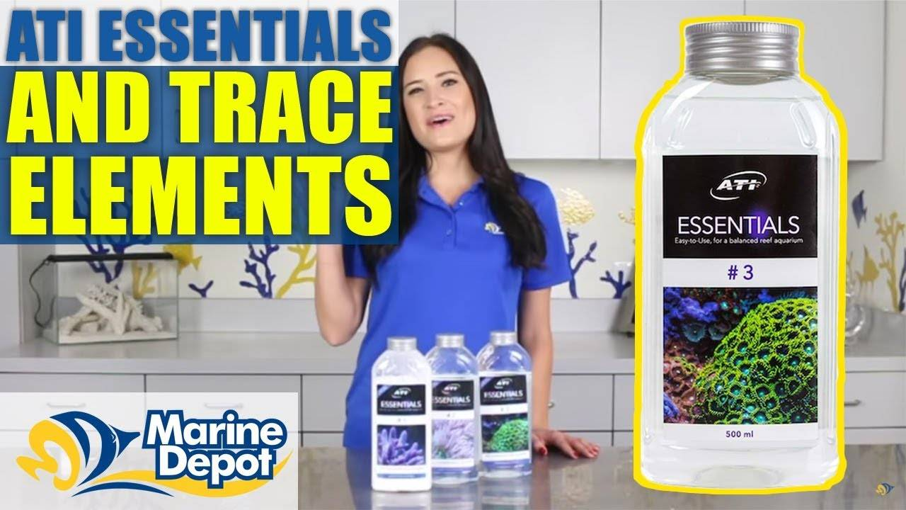 ATI Essentials and Trace Elements: What YOU Need to Know