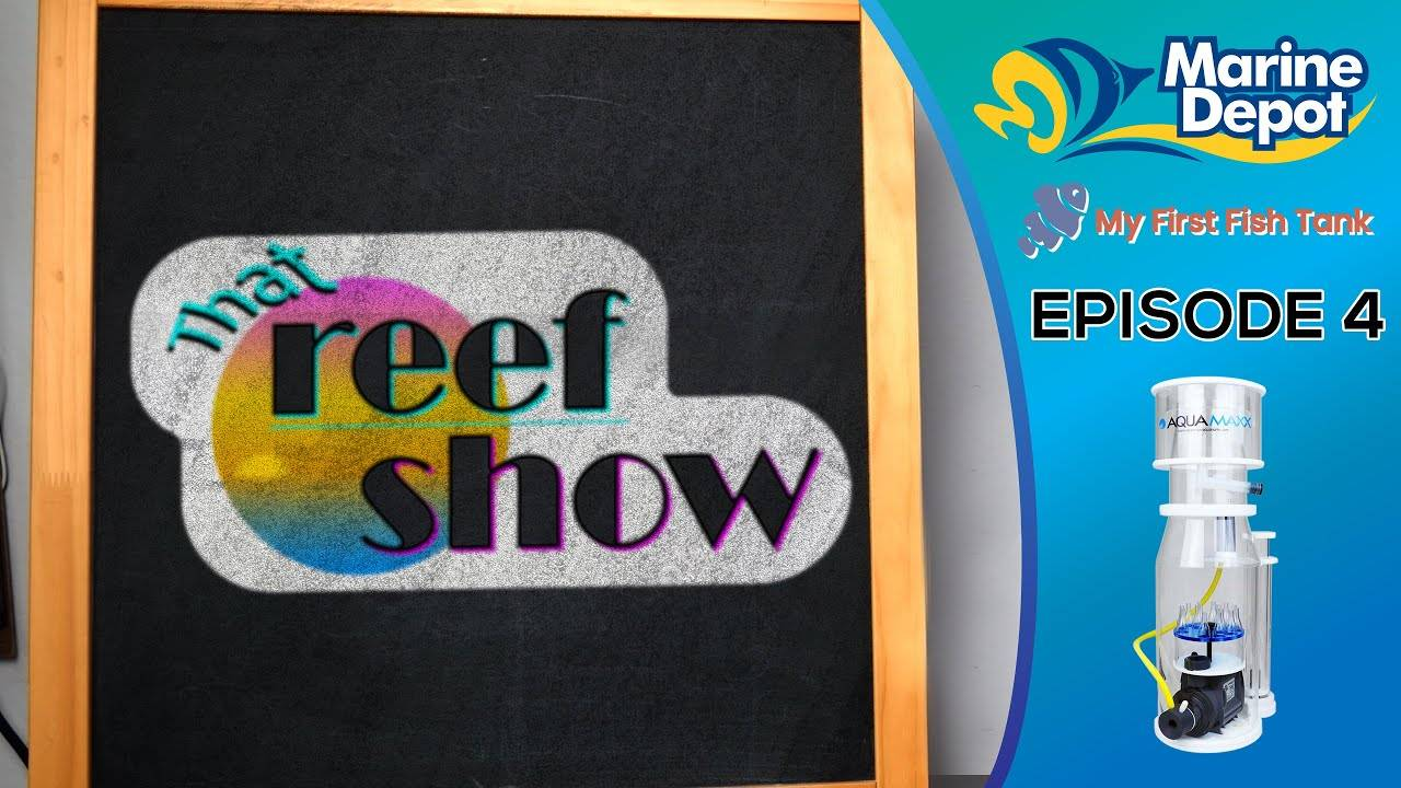 That Reef Show Ep 4: All About RO/DI and the AquaMaxx Q2 Protein Skimmer!