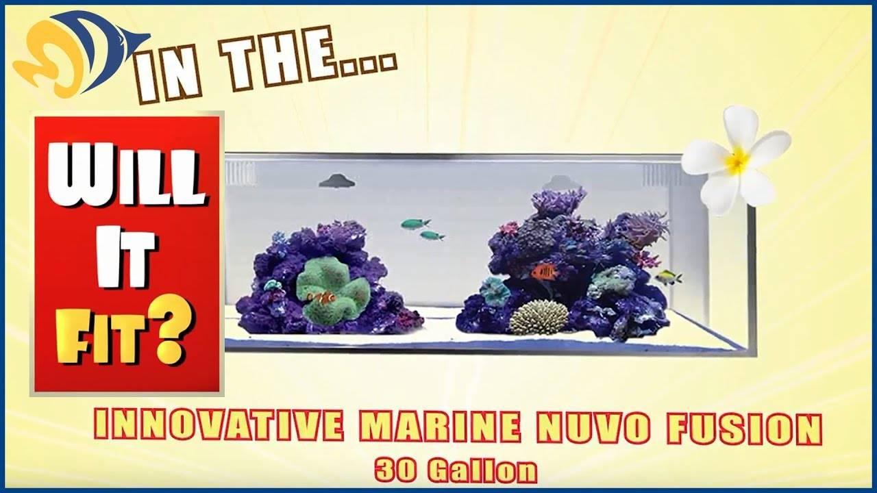 Will It Fit? - Innovative Marine NUVO Fusion Micro 30L Aquarium