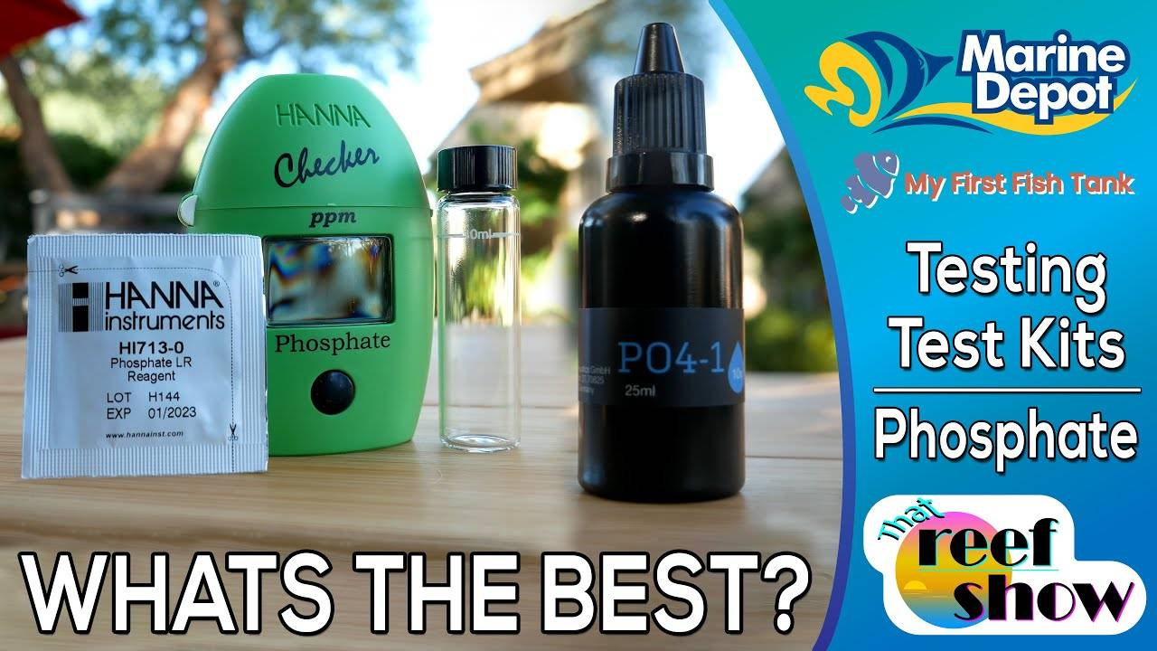 What's the best way to test Phosphates?  Putting test kits to the test!