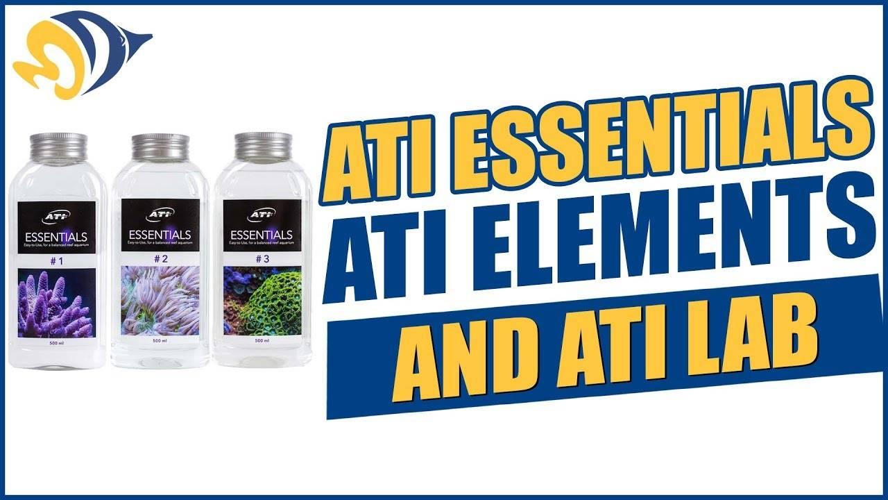 """""""ATI Essentials"""