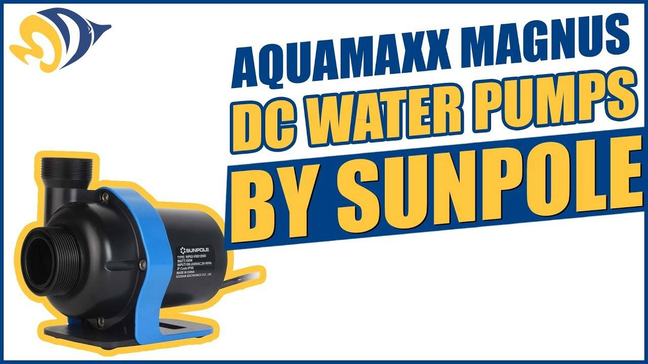 """""""AquaMaxx Magnus DC Water Pumps by Sunpole: Strong"""