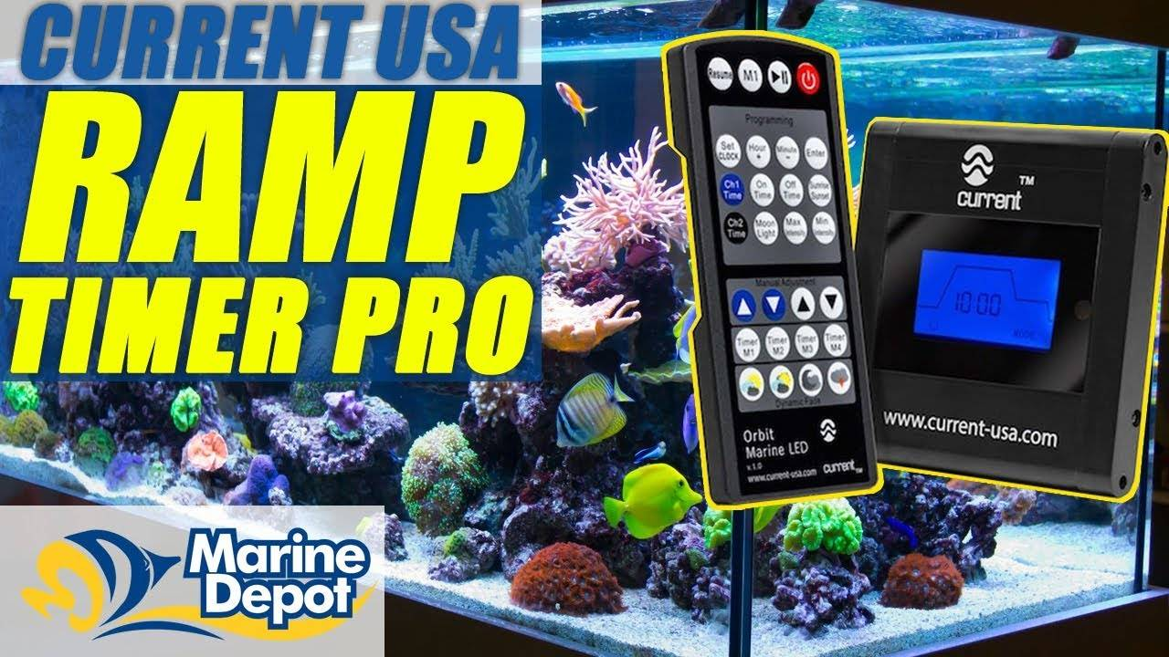 Current USA Ramp Timer Pro: What YOU Need to Know