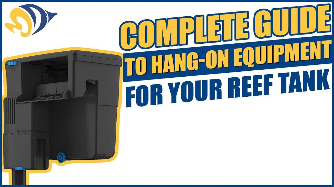The Complete Guide to Hang-On Equipment for Your Reef Tank