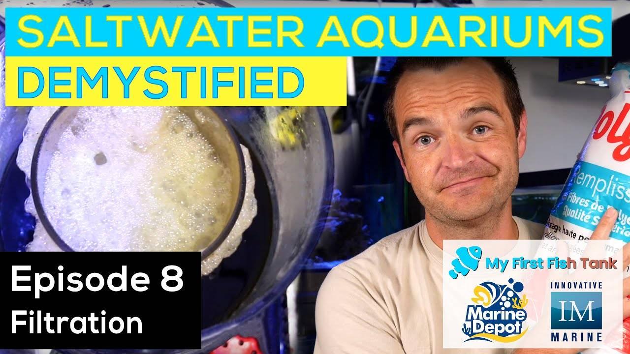 Saltwater Aquariums Demystified Ep. 8: Filtration