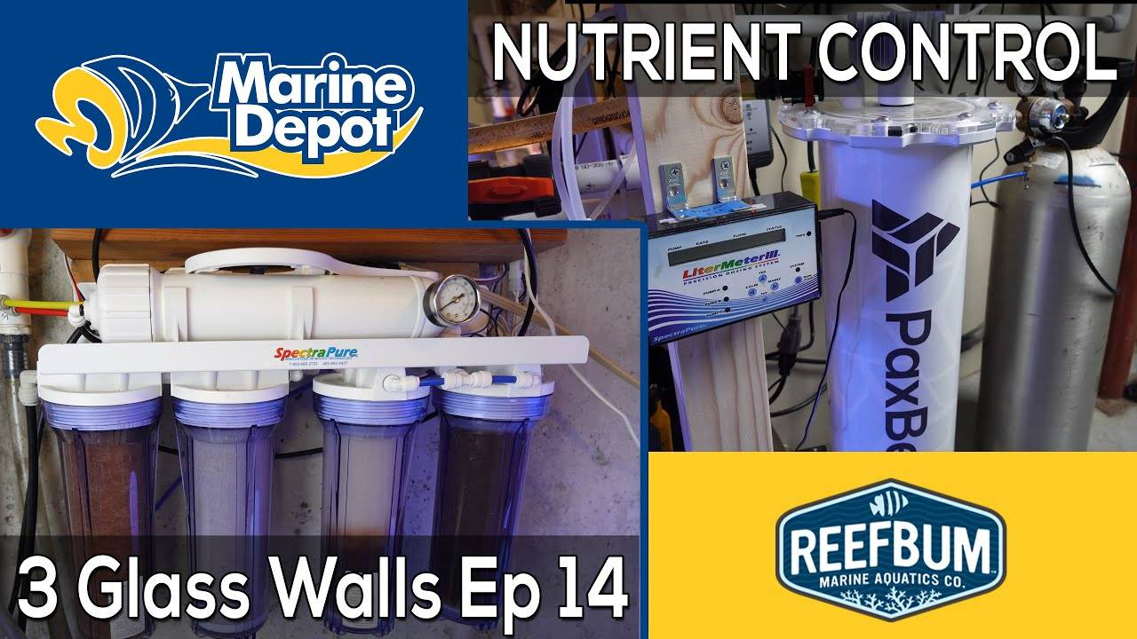 Nutrient Control: 3 Glass Walls with Reefbum Part 14