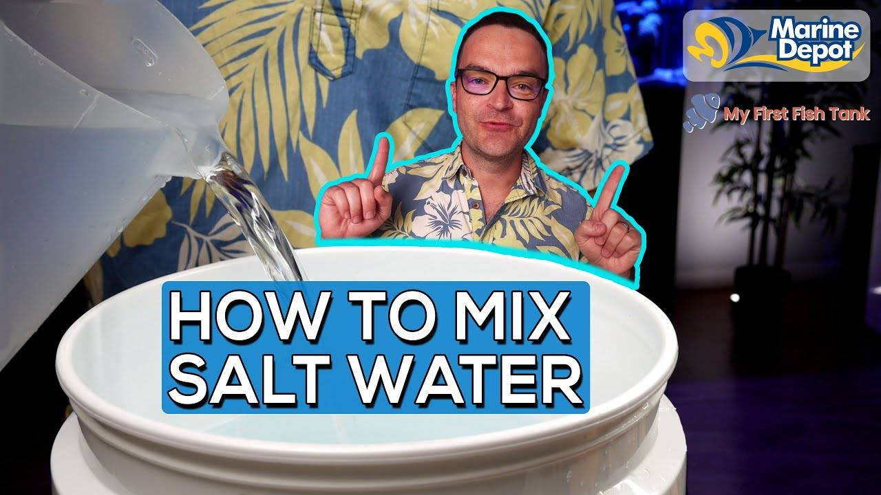 """""""How To Mix Saltwater for Your Reef Tank 
