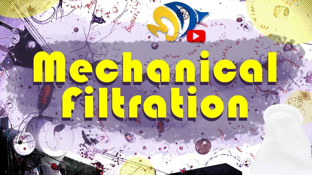 Keeping your Tank Clean! The Whys and Hows of Mechanical Filtration!