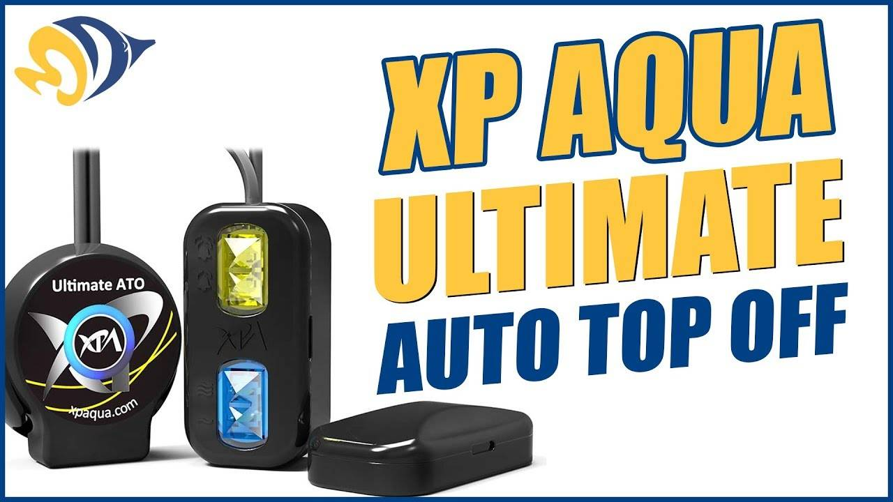 XP Aqua Ultimate ATO  4-Sensor Auto Top-Off System - What YOU Need to Know