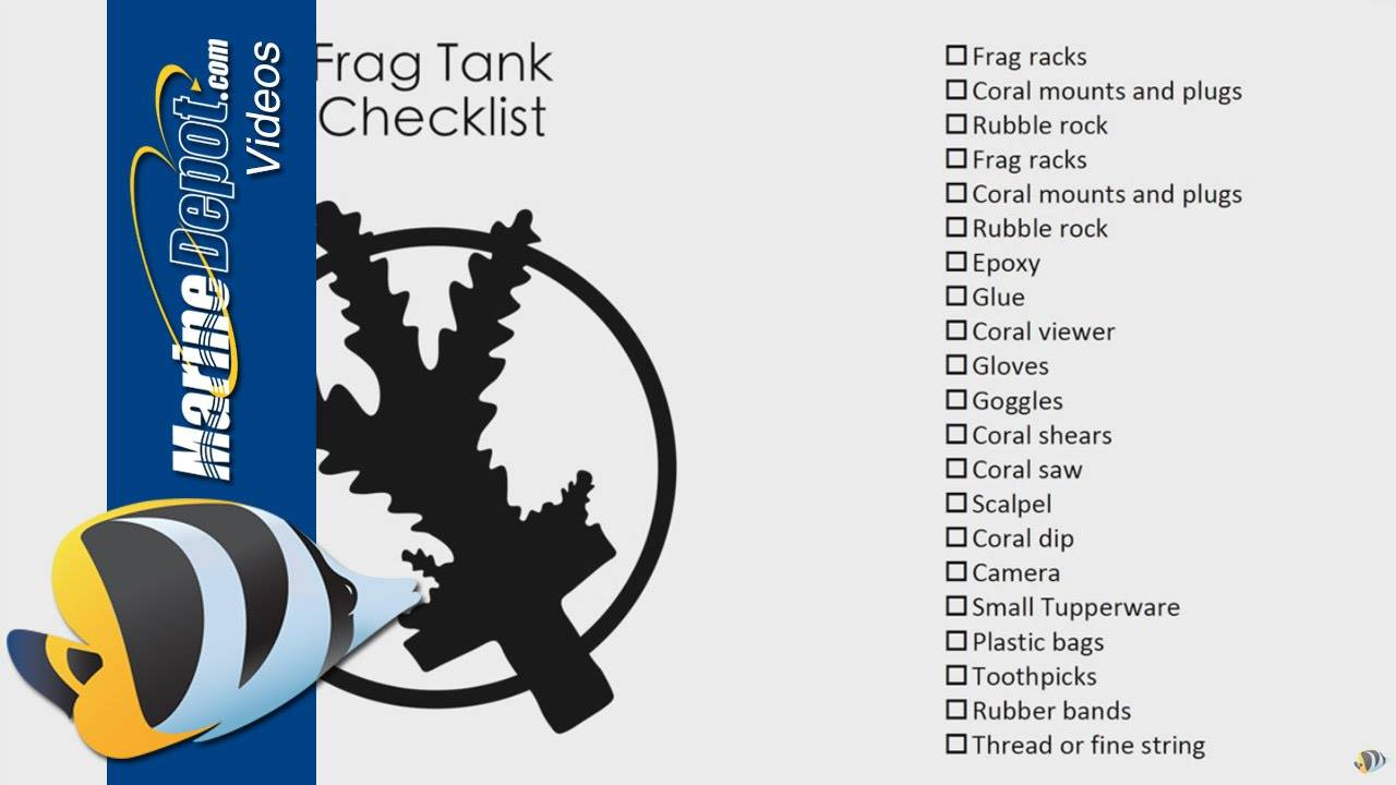 How to Frag Corals and Build a Frag Tank