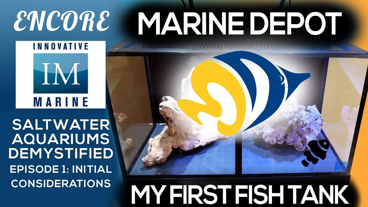 Saltwater Aquariums Demystified: Initial Considerations Ep. 1