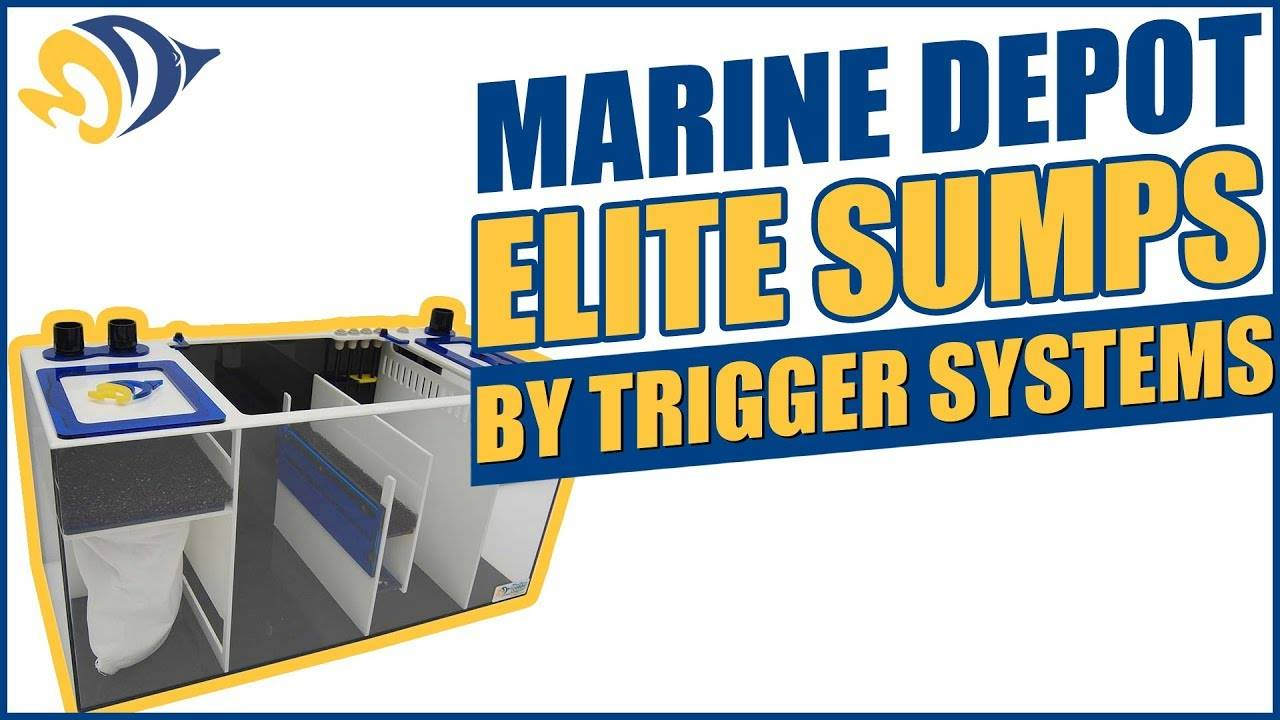Marine Depot Elite Sumps: Built By Trigger Systems - Loaded With Attractive Features!