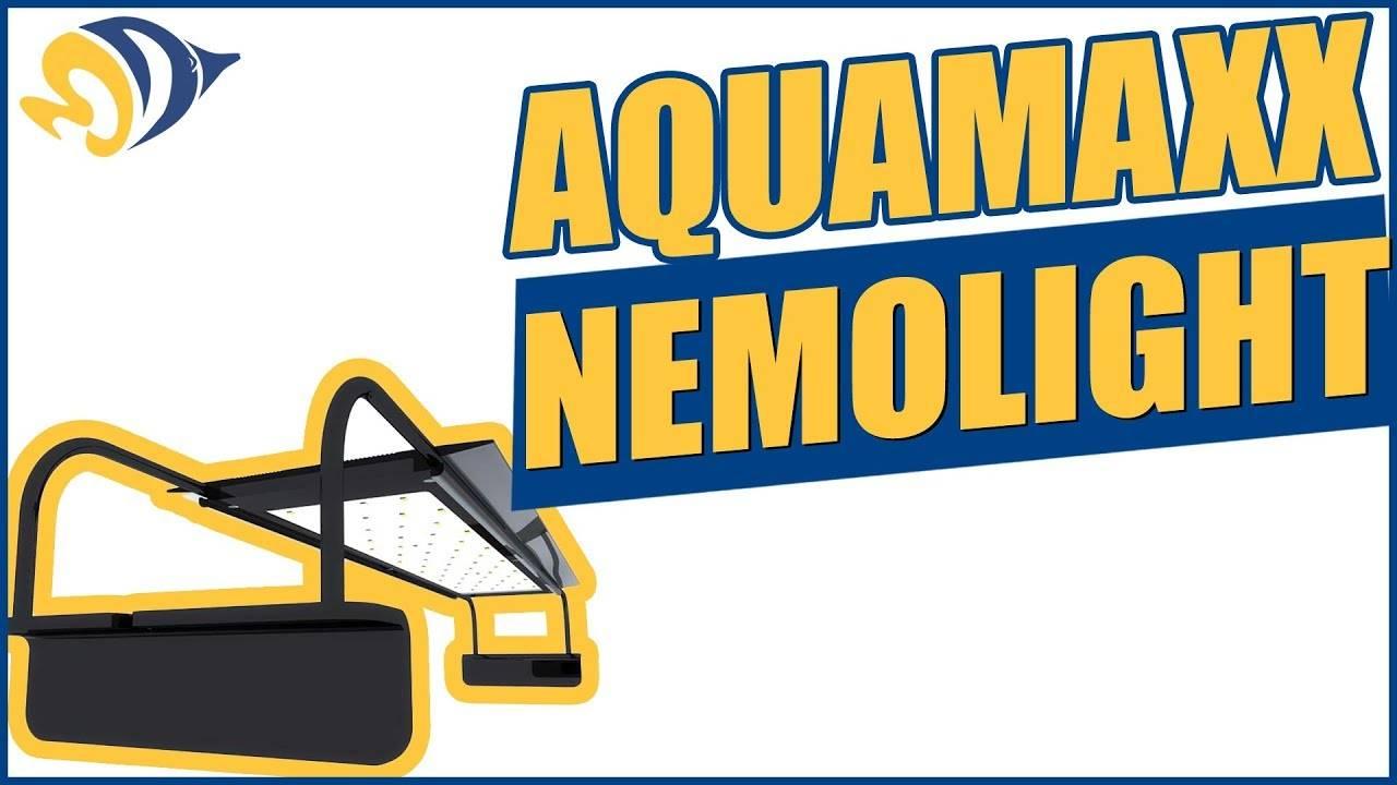 """""""AquaMaxx NemoLight: Powerful"""