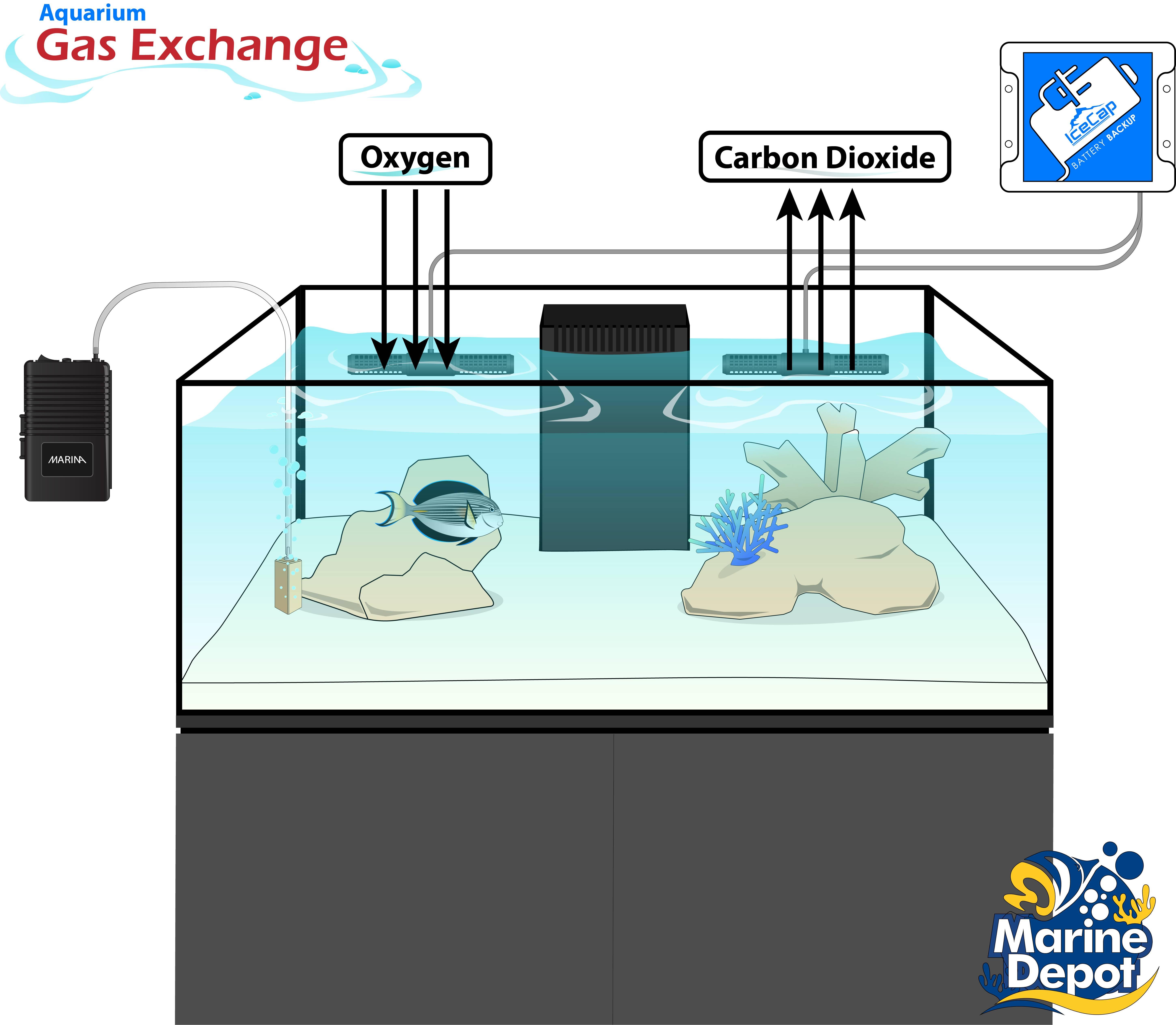 aquarium gas exchange and emergency plan back up battery and air pump setup diagram