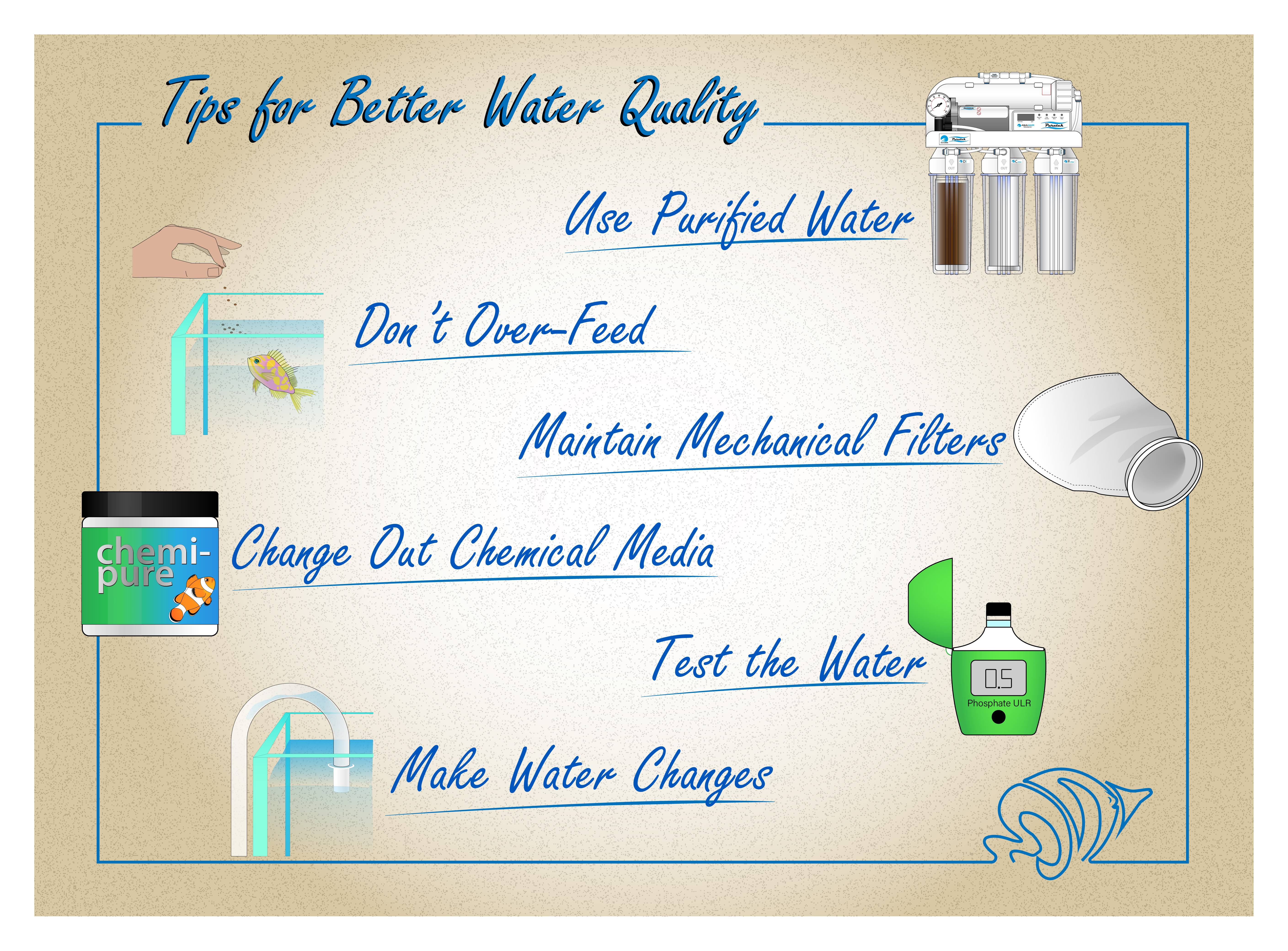Infographic of tips to improve water quality in the aquarium