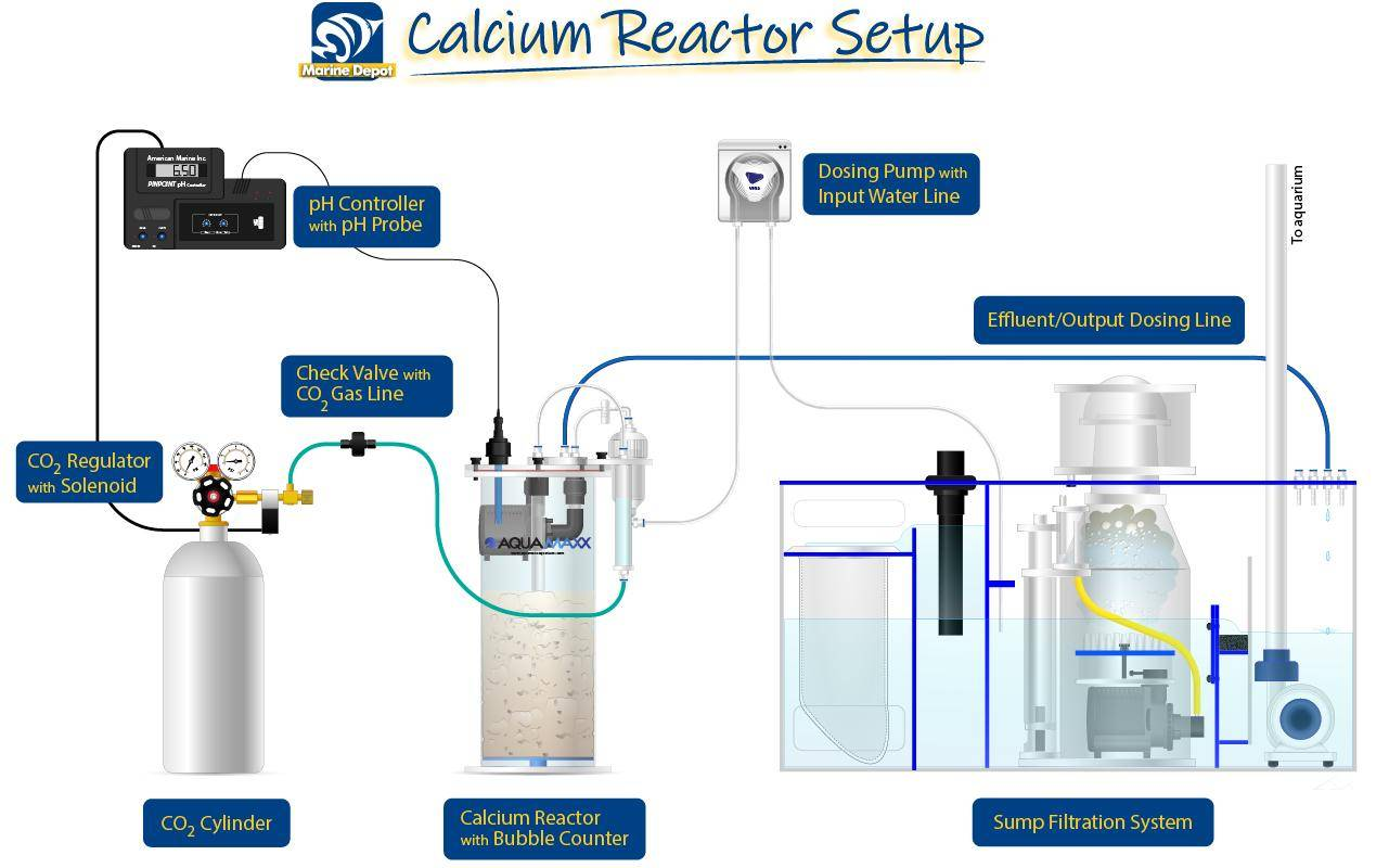 diagram of how a calcium reactor is setup with all components needed.