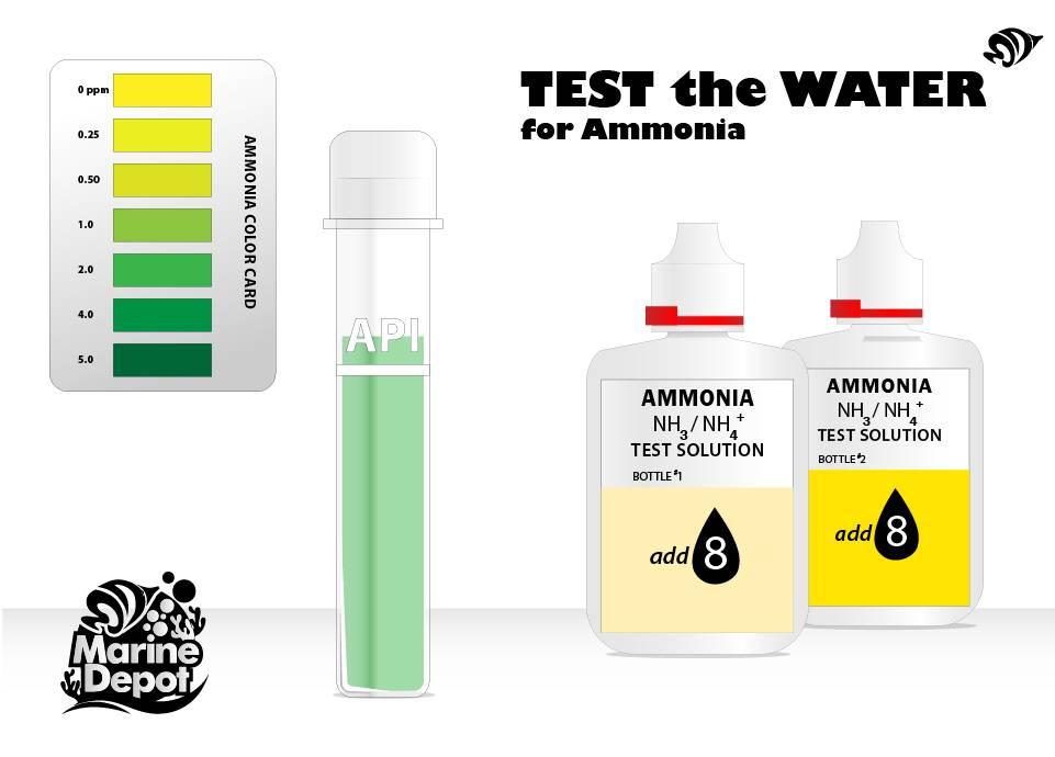 Testing ammonia
