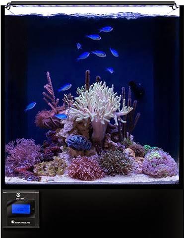 http://www.marinedepot.com/Current_USA_Orbit_Marine_LED_Aquarium_Light__20_Inch_LED_Light_Fixtures-Current_USA-CU04100-FILTFILDTN-vi.html